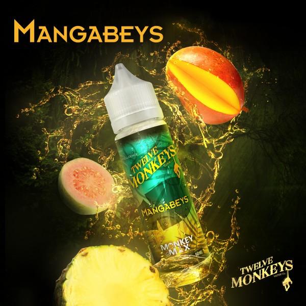 Mangabeys